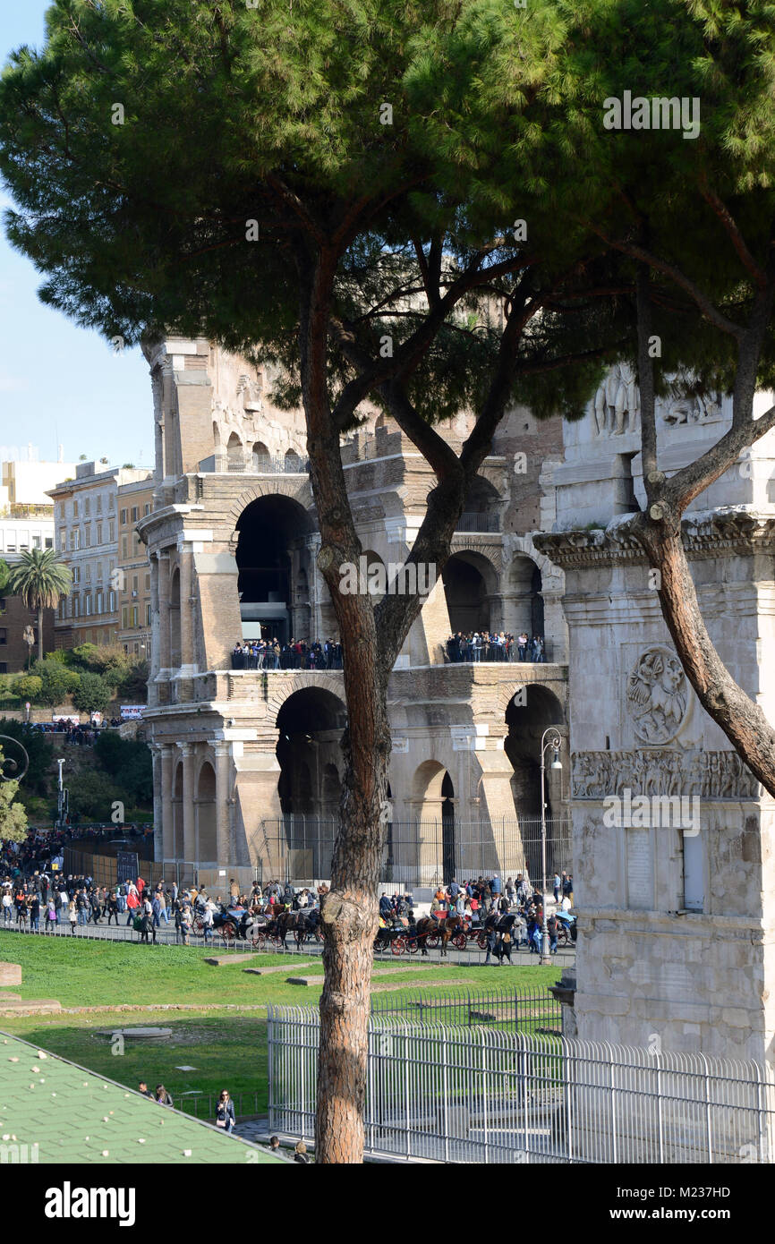 Crowds gathering by the Colosseum and the archway of Constantine with a pine tree in the foreground in Rome - Stock Image