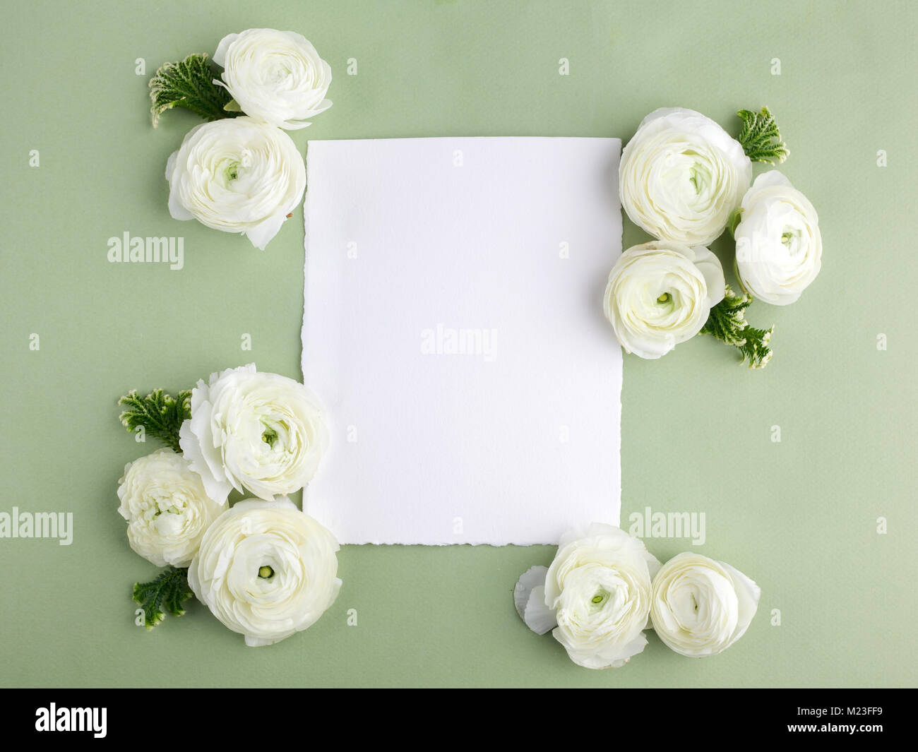 Floral Frame Made Of White Flowers And Leaves On Green Background