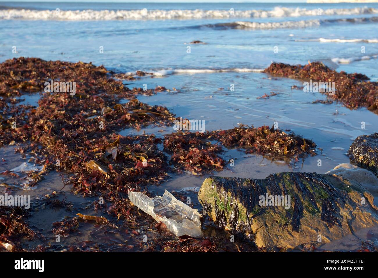 plastic bottles washed up on beach - Stock Image