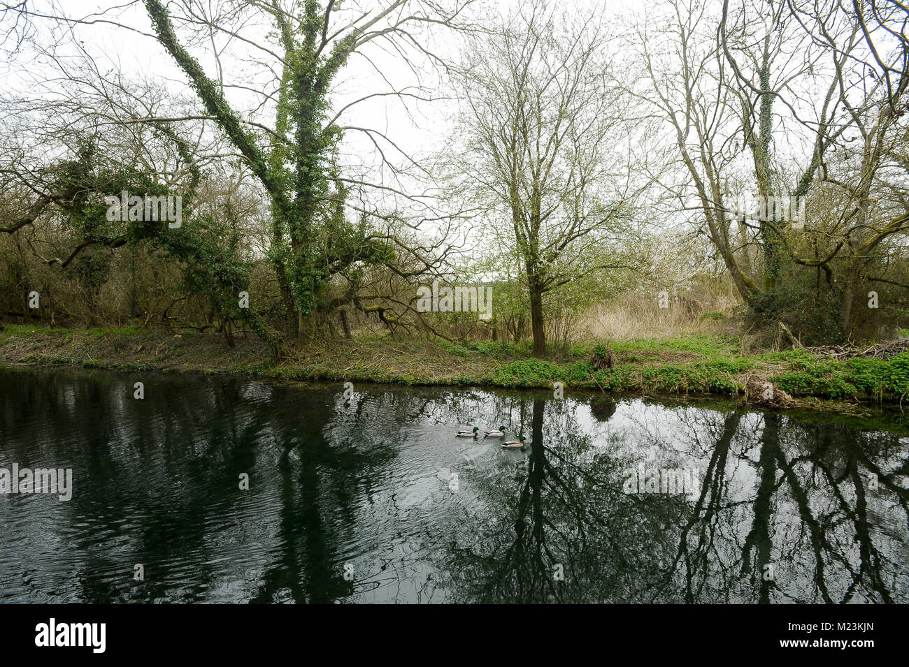 Basingstoke Canal in Odiham, Hampshire, England, United Kingdom. April 2nd 2015 © Wojciech Strozyk / Alamy - Stock Image