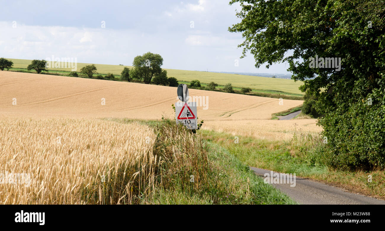 A country lane cuts through fields of crops in the arable farmland south of Cambridge on the Cambridgeshire and - Stock Image