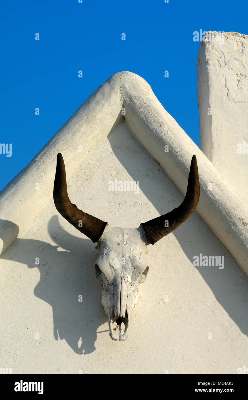 Bull Horns and Skull Hanging on Gable Wall of a Typical Camargue House in Les Saintes-Maries-de-la-Mer Provence - Stock Image
