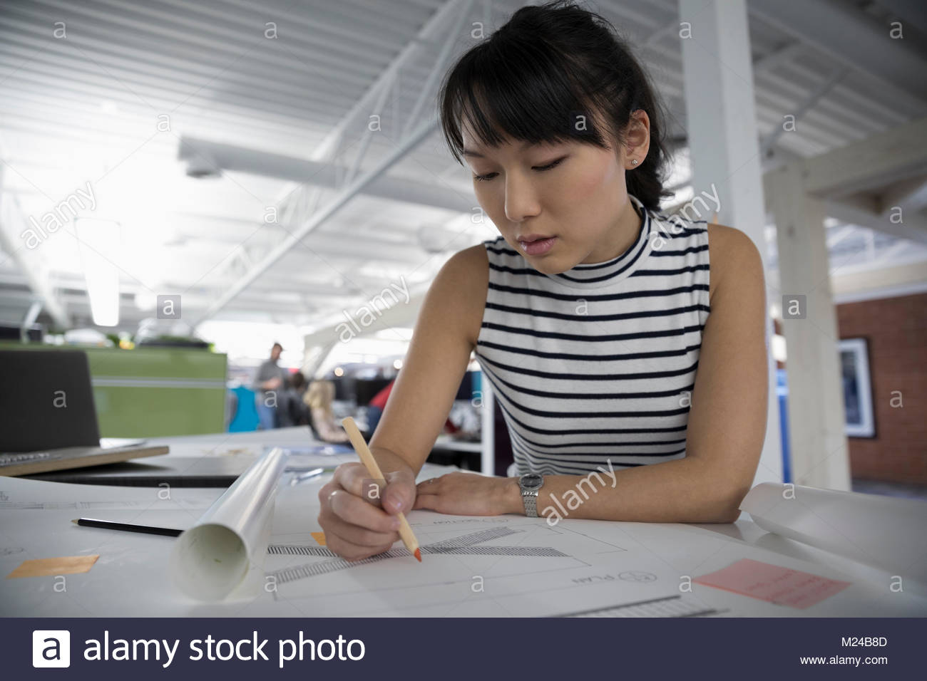 Focused architect drafting blueprints in office - Stock Image
