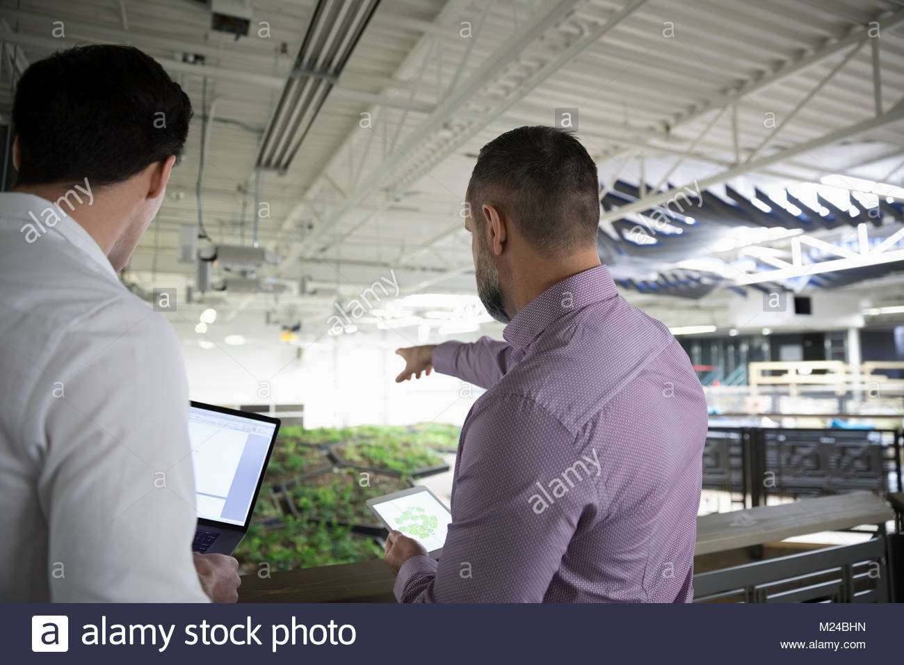 Botanists discussing rooftop garden experiment in laboratory - Stock Image