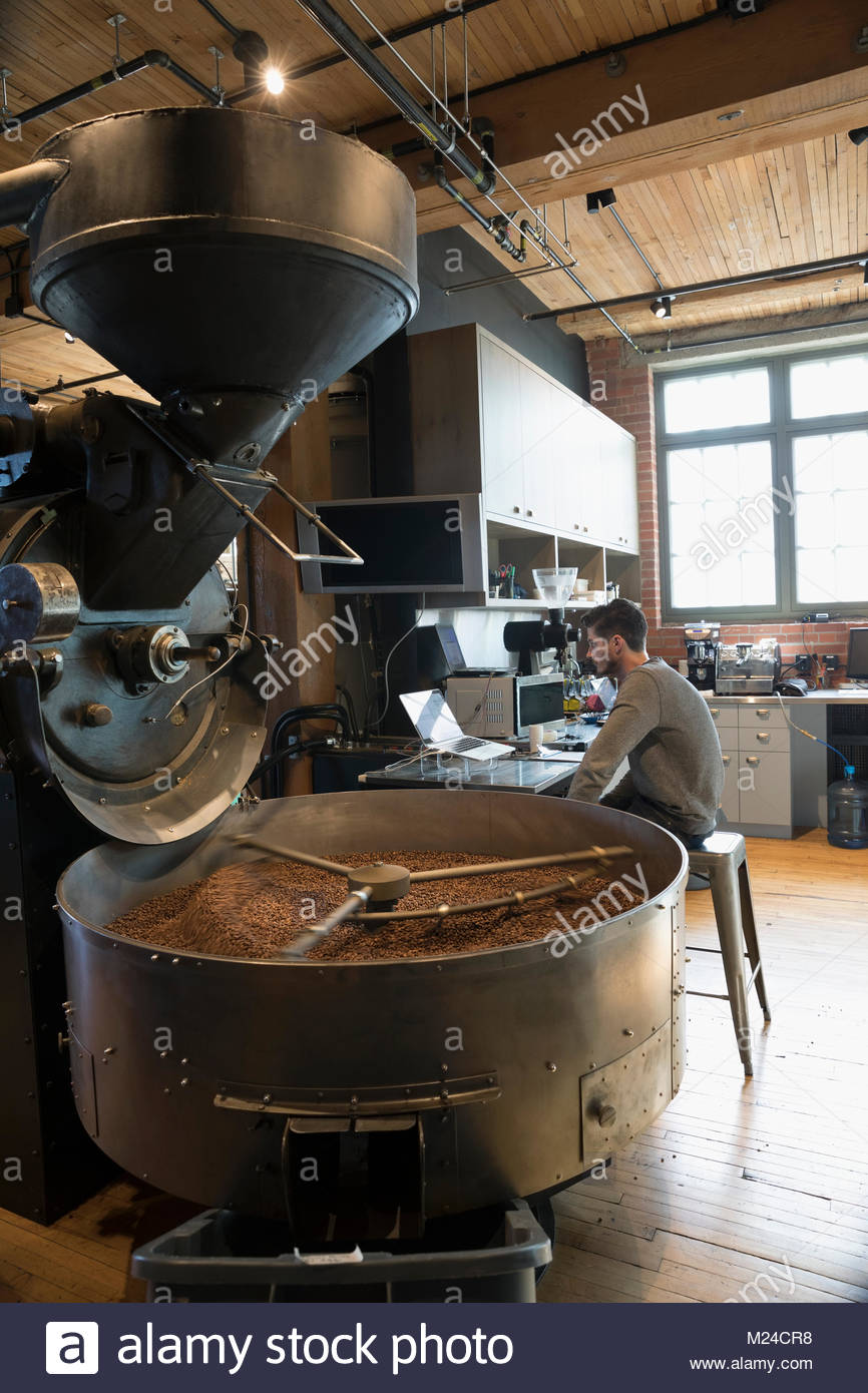 Male coffee roaster using laptop next to coffee roasting machine - Stock Image