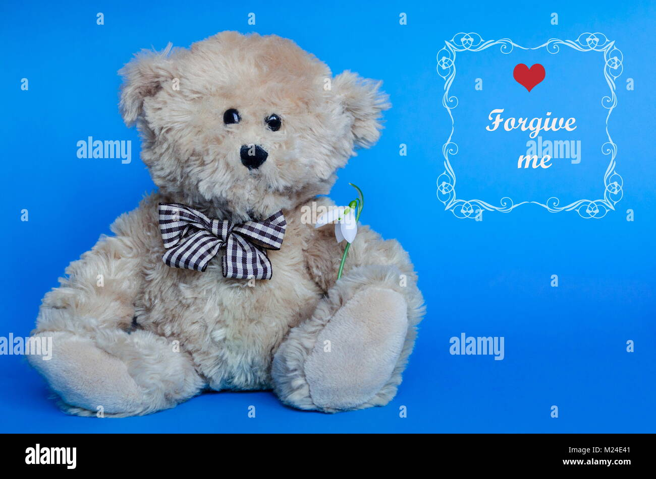 Cute teddy bear and red hearts for Valentine's Day, with text: forgive me - Stock Image