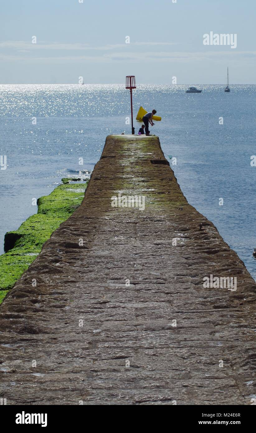 Boy Crabbing from a Coastal Stone Pier Breakwater at Dawlish Beach. Summer 2015 on a Tranquil Day. Devon, UK. - Stock Image