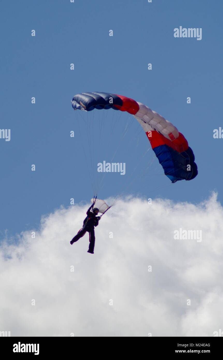 The Royal Navy Parachute Display Team, The Raiders, at Dawlish Air Show, 2015, Devon, UK. - Stock Image