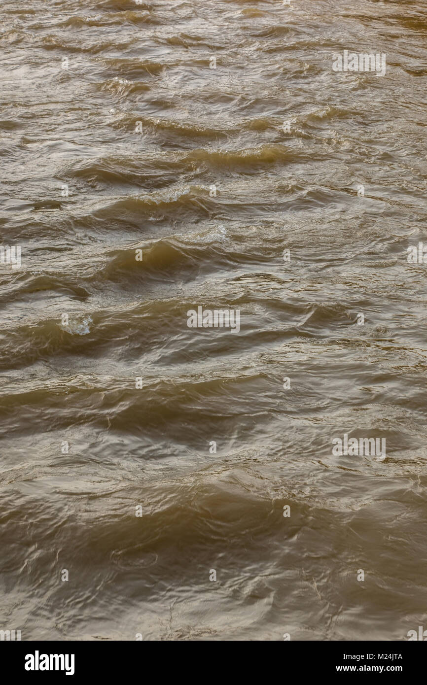 Wild river at high tide water level - Stock Image