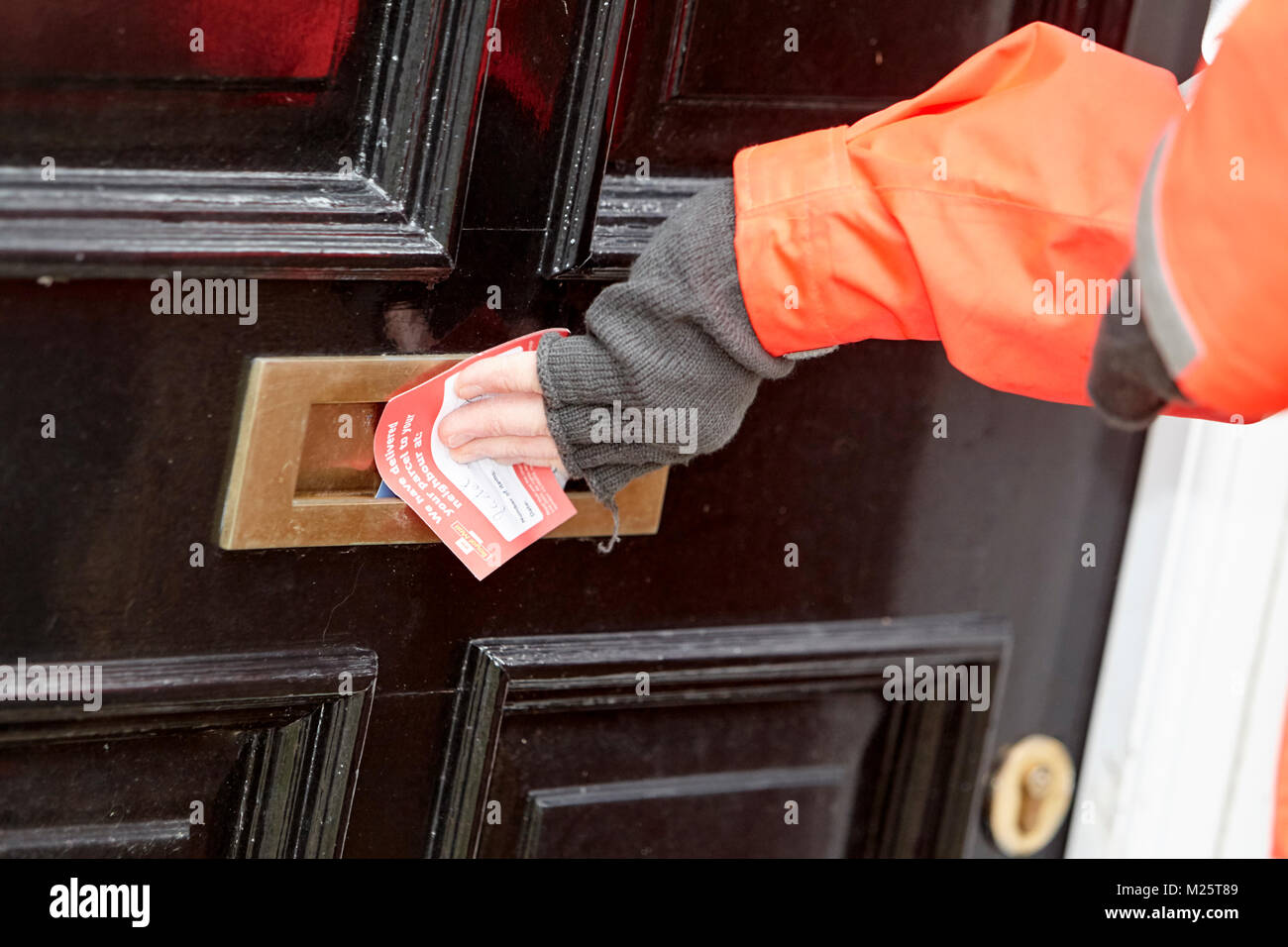 postman puts note through the letterbox to indicate post left with neighbours - Stock Image
