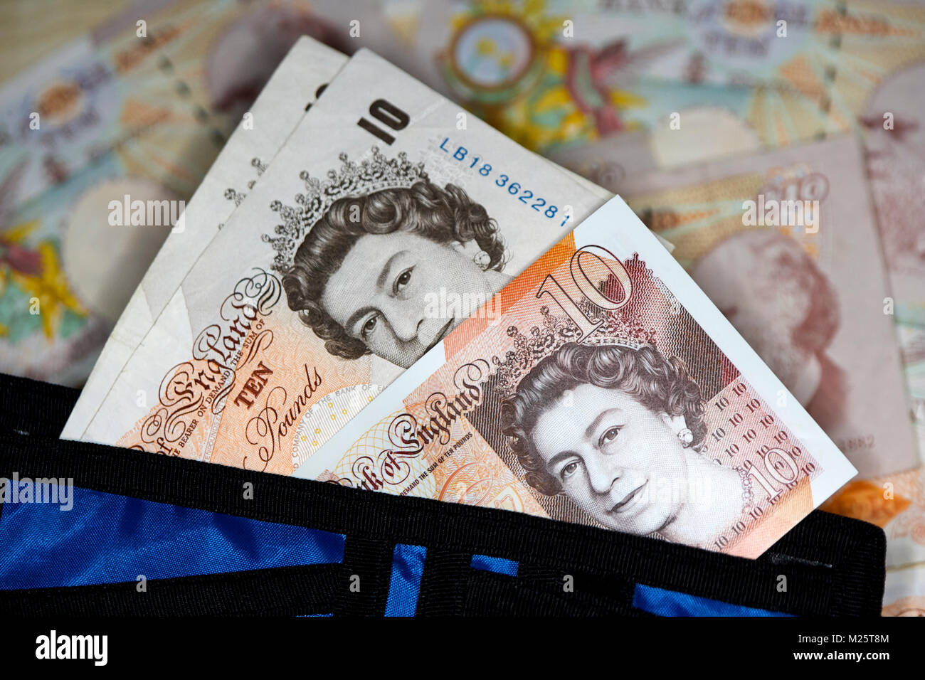 new polymer 10 quid notes with soon to be phased out paper 10 pound notes in a wallet in the uk - Stock Image