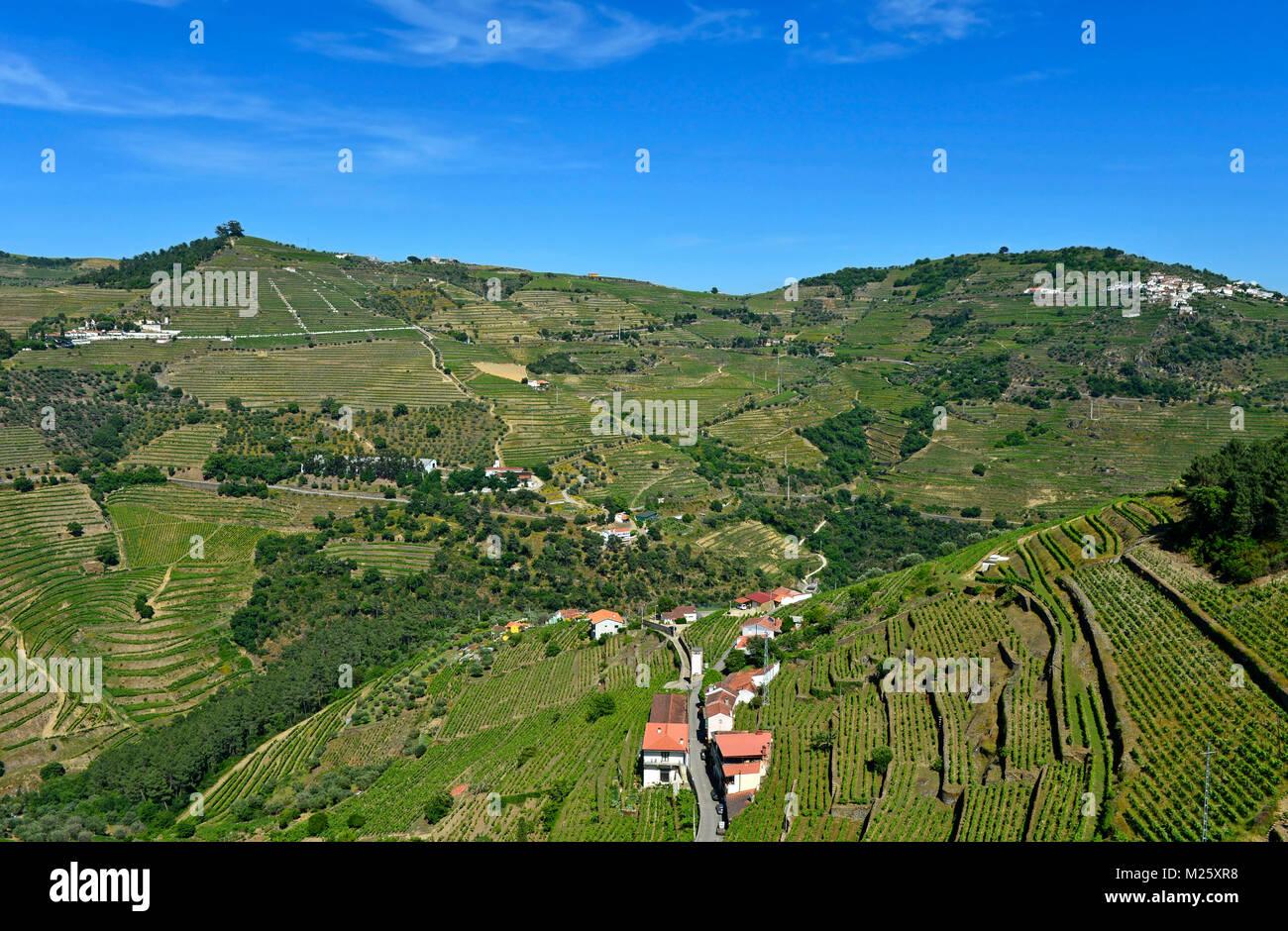 Terraced vineyards in the Rio Pinhao Valley, Sao Cristovao do Douro, Portugal - Stock Image