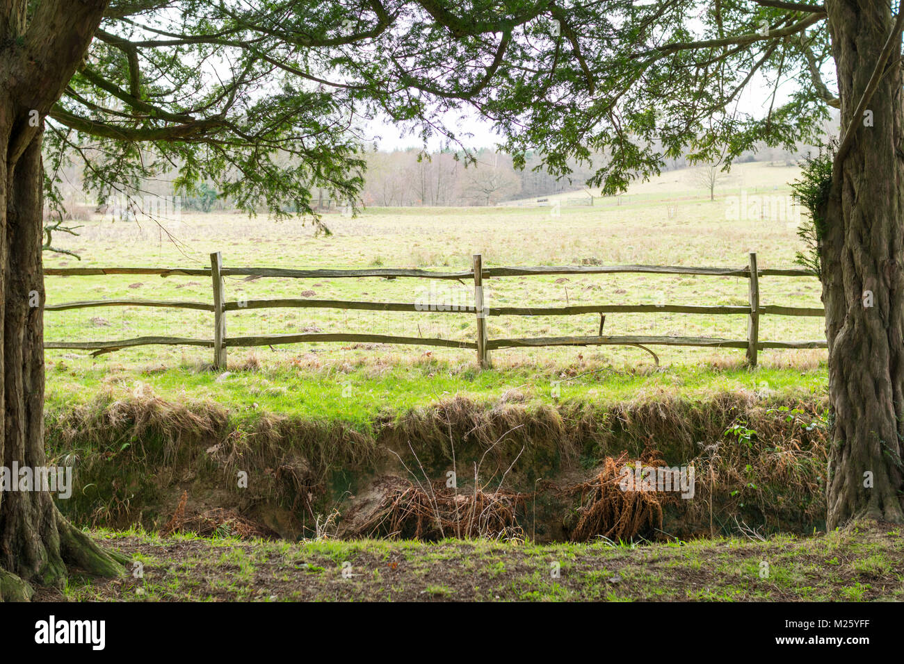 Field through fence framed by trees in Sussex, England, with a ditch before the fence - Stock Image