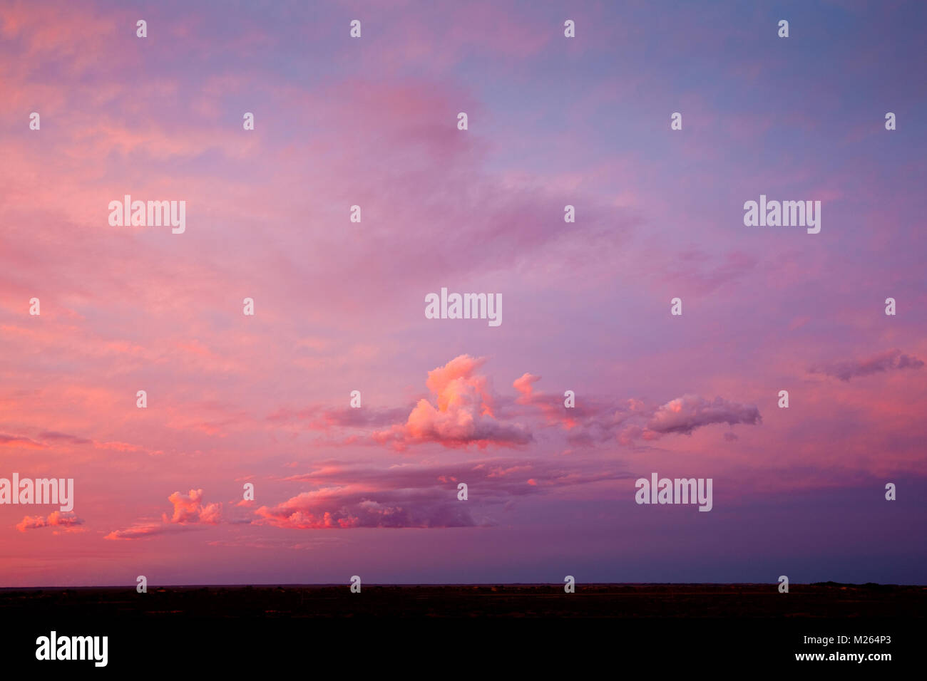 Pink sunset over plain country, near Menindee, NSW, an area part of the Murray Darling Basin, Australia. - Stock Image