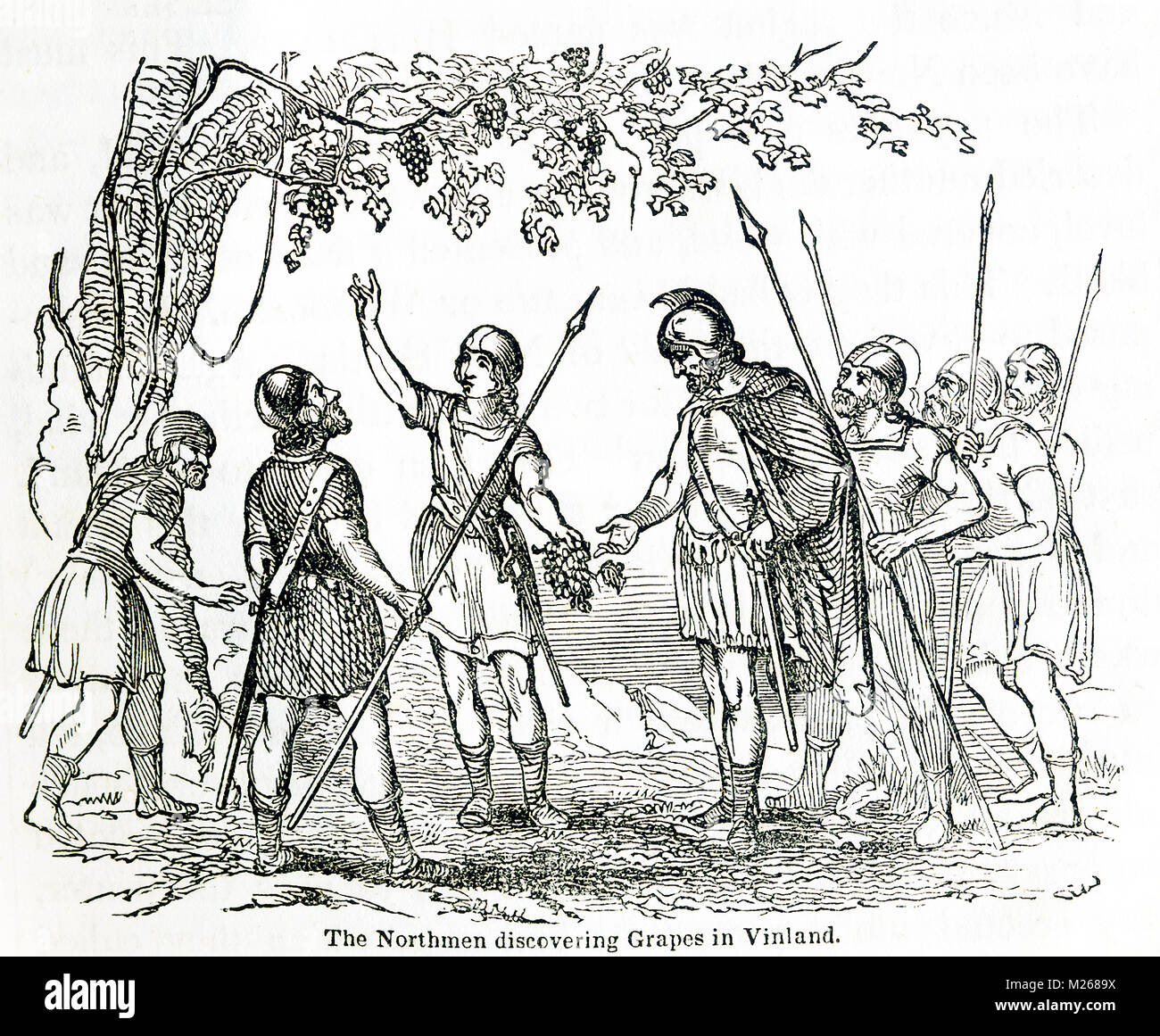 This illustration dates to around 1846 and shows the Northmen discovering grapes in Vinland. Vinland is an old Norse - Stock Image