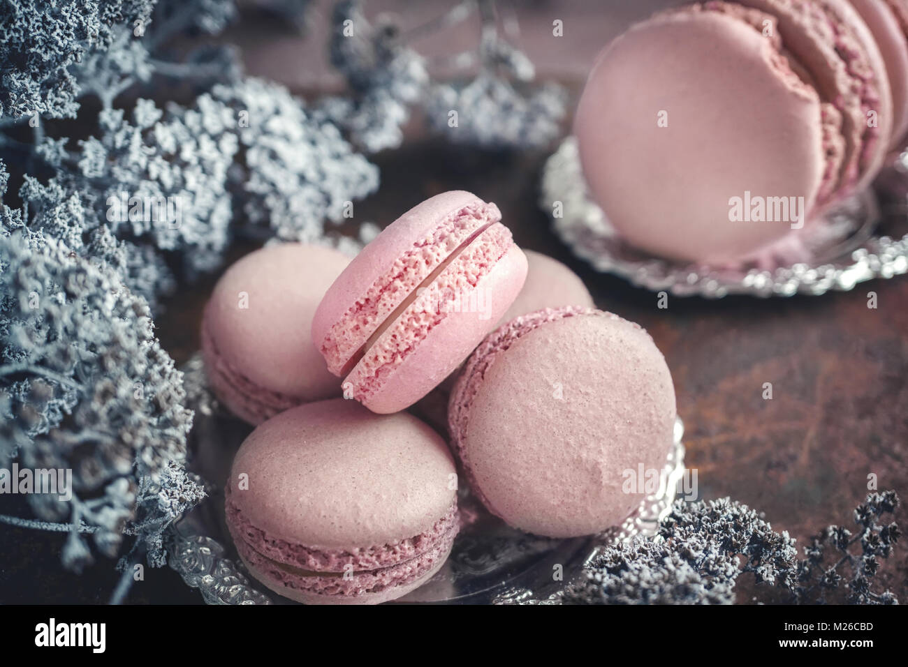 Freshly baked macaroons on metal plate with small white flowers on wooden background. Selective focus. - Stock Image