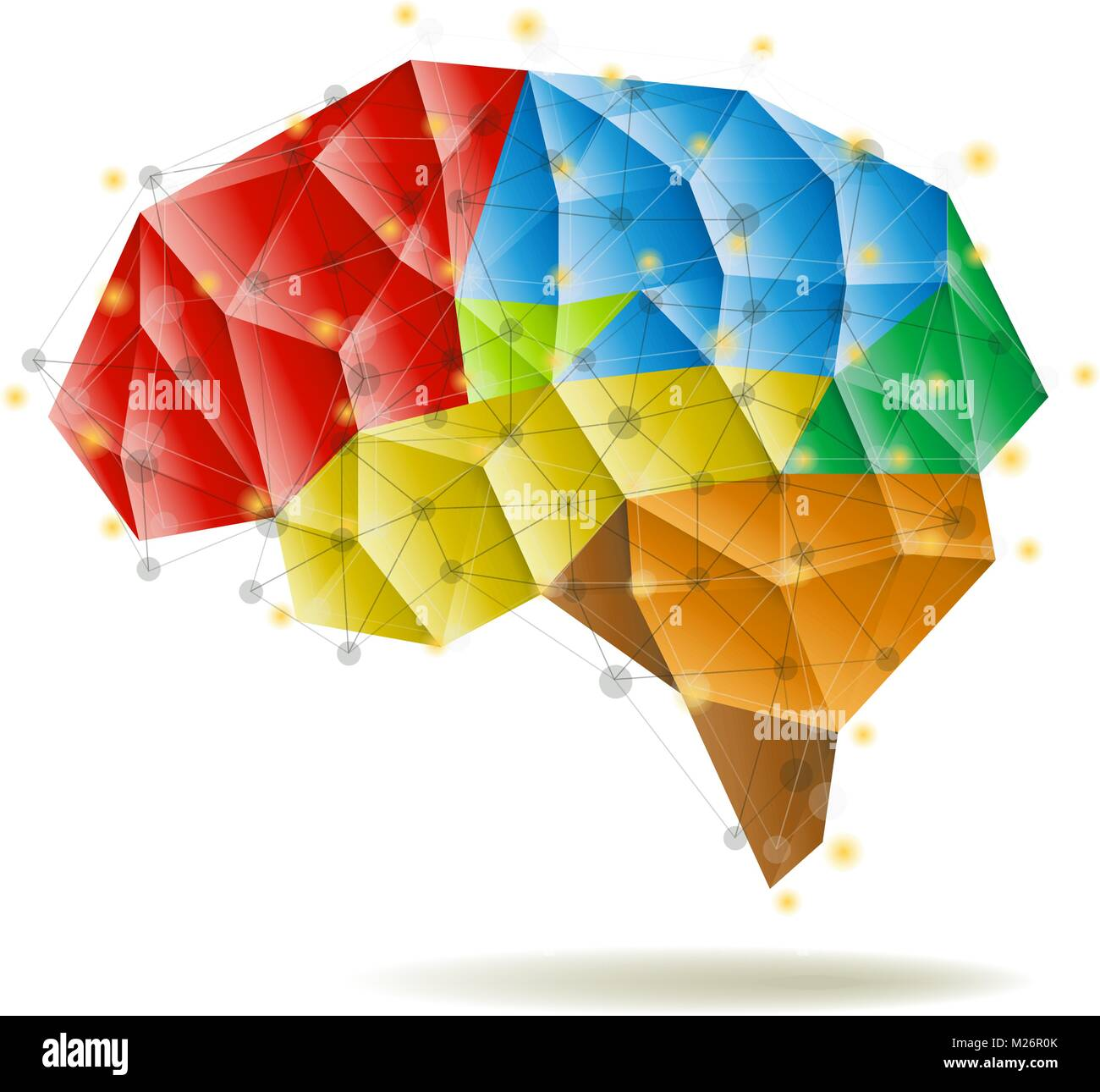 Human Brain Anatomy Structure Vector Illustration
