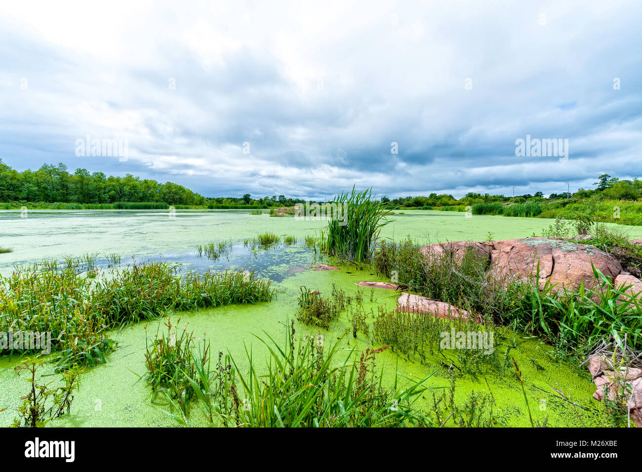 The sewage lagoon near Killarney, Ontario - Stock Image