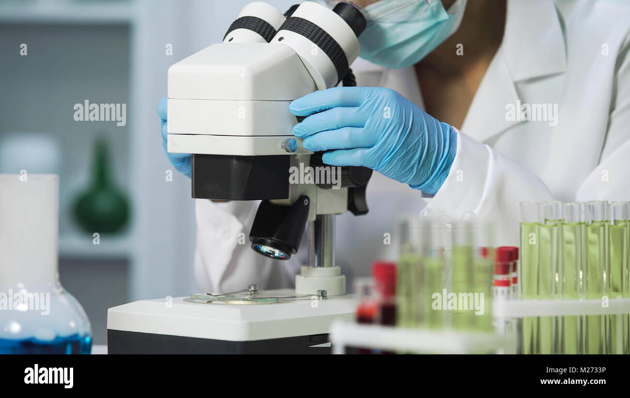 Close-up of bacteriologist viewing samples of bacteria on microscope, virology - Stock Image