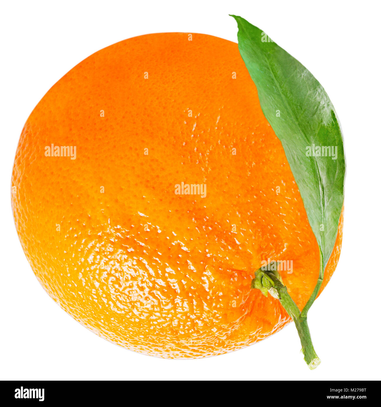 Isolated oranges. One orange with leaf isolated on white background with clipping path as packaging design element. - Stock Image