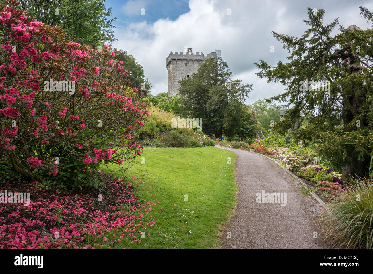 Blarney Castle and Gardens, County Cork, Ireland - Stock Image