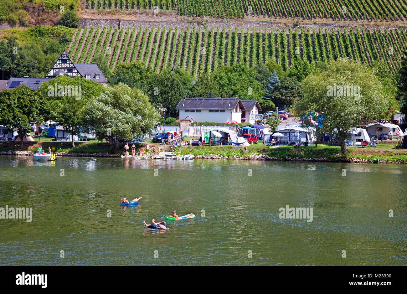 Camping ground at riverside, bathing in Moseller river, Wolf, Traben-Trarbach, Moselle river, Rhineland-Palatinate, Germany, Europe Stock Photo