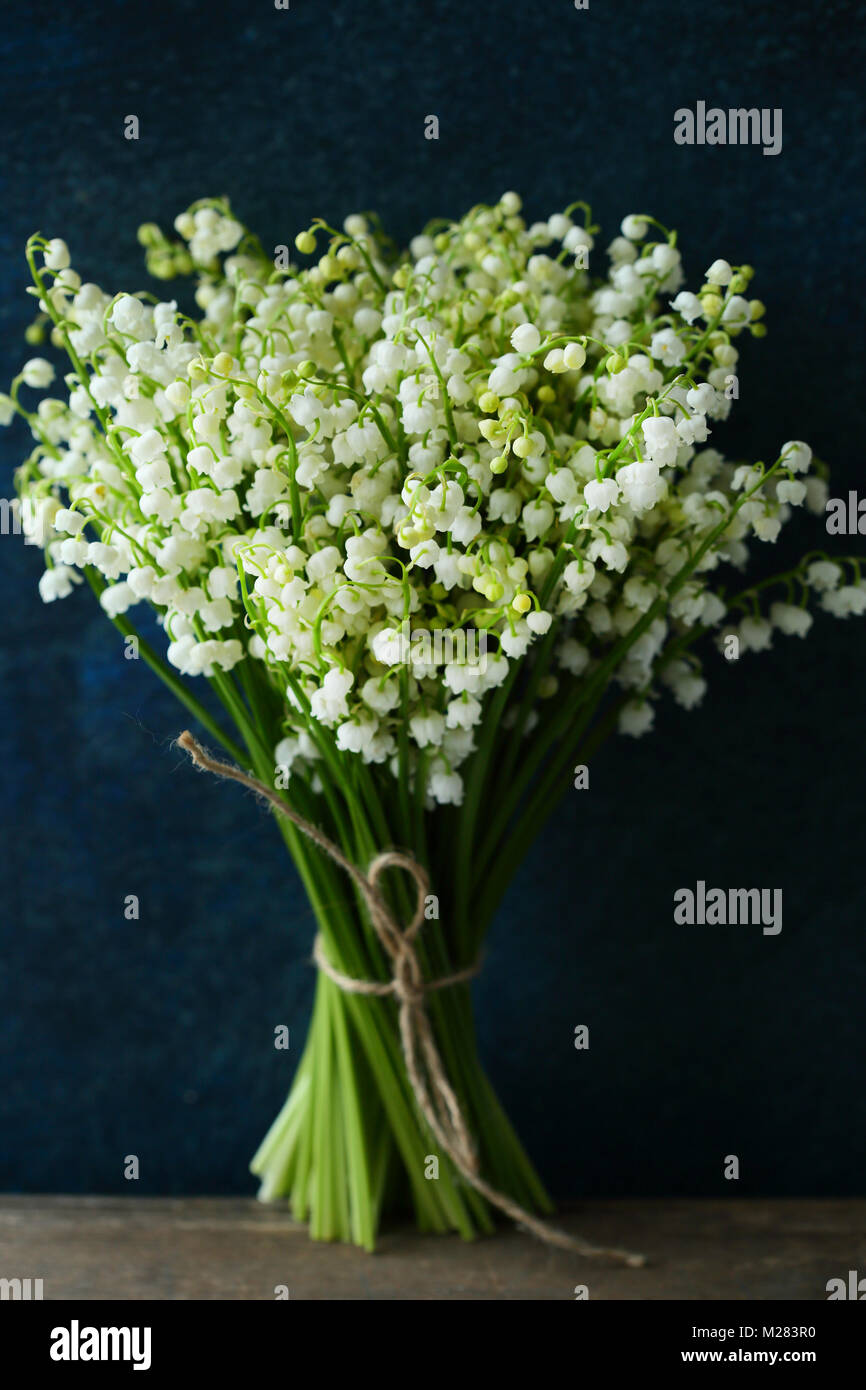 Spring Lily Of The Valley Flowers Stock Photo 173511604 Alamy