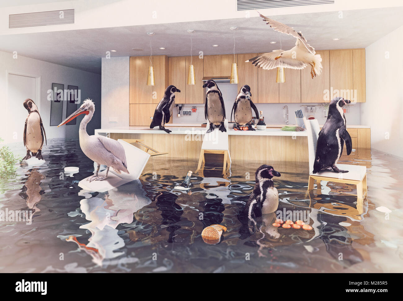 ocean birds in the flooding kitchen interior. Creative media mixes concept. - Stock Image