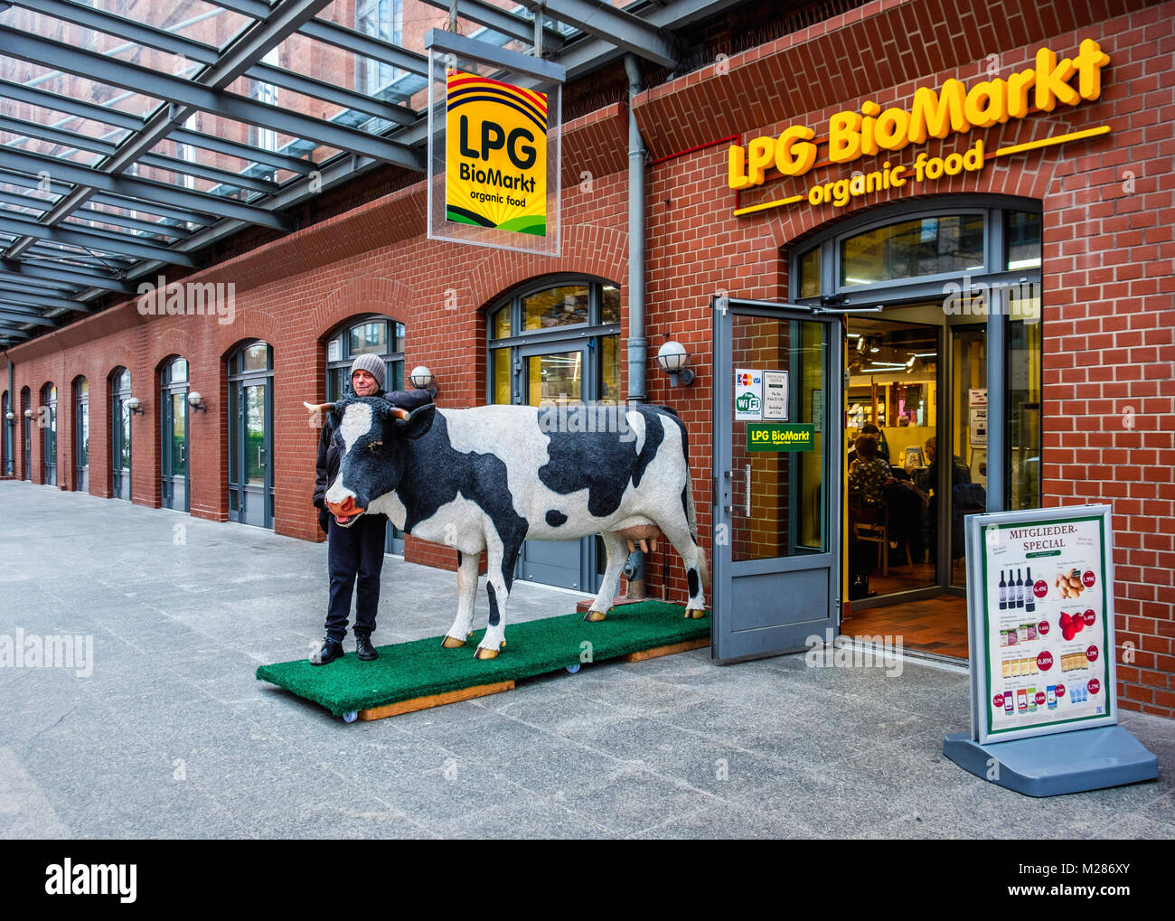 Berlin,Mitte,Moabit.LPG BioMarket organic food store entrance and elderly man standing with model of life size cow - Stock Image