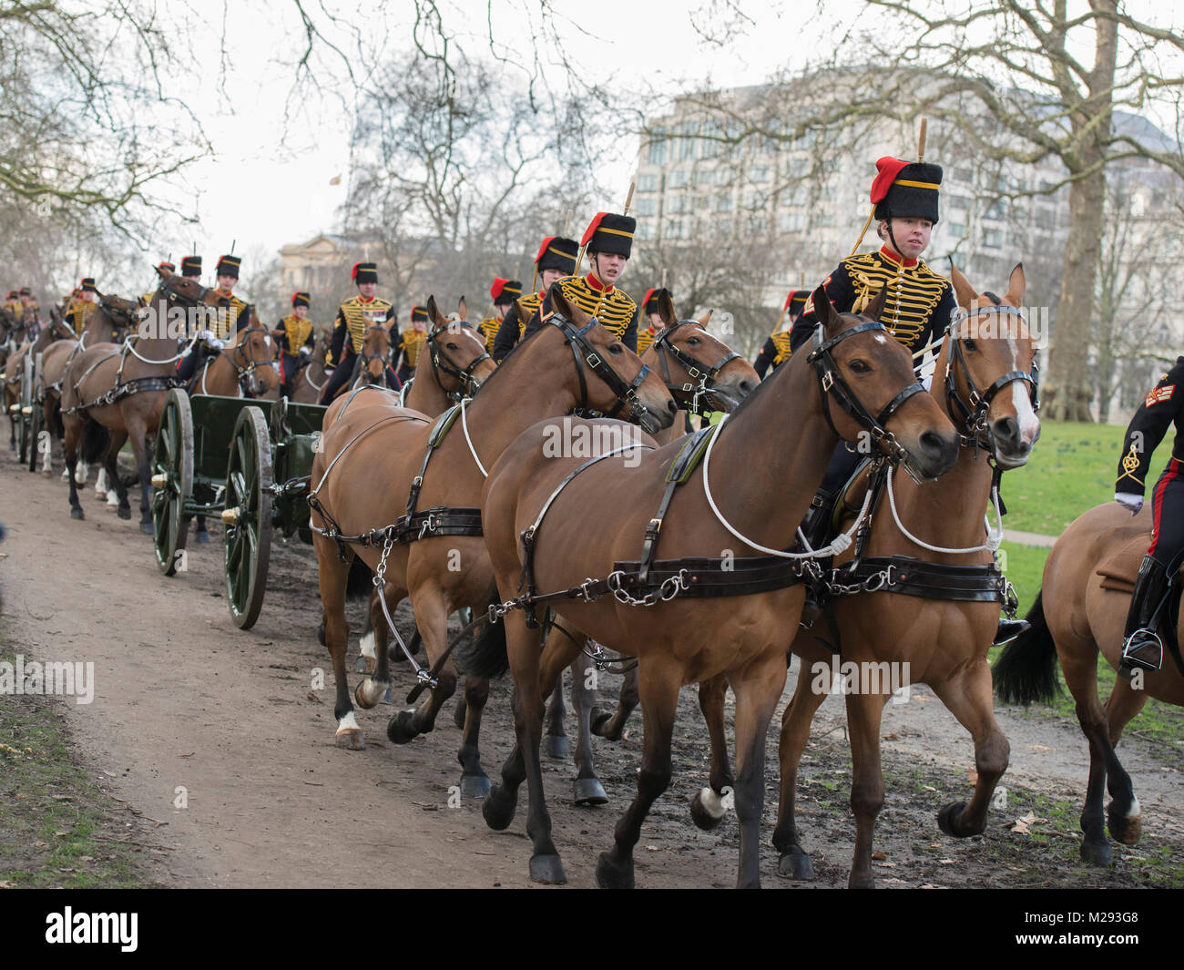 Green Park London, UK. 6 February 2018. The King's Troop Royal Horse Artillery, wearing immaculately presented full - Stock Image