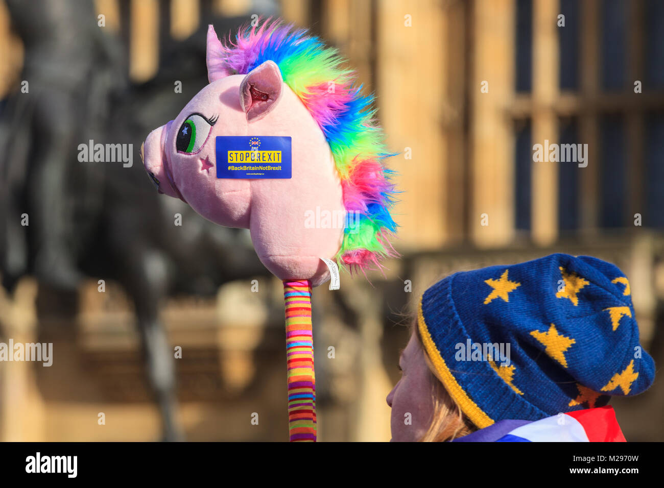 Westminster, London, UK. 6th Feb 2018. The Daily SODEM (Stand of Defiance European Movement) action protest sees Stock Photo