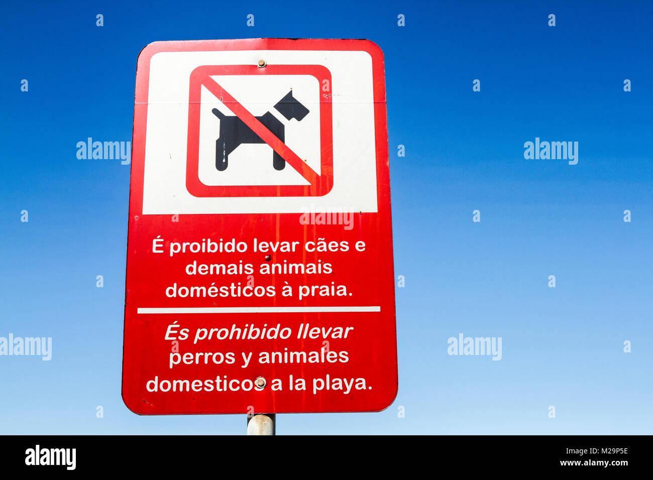 Bilingual urban signage at Meia Praia Beach. Itapema, Santa Catarina, Brazil. - Stock Image