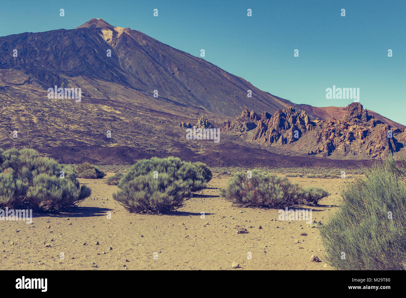pice de teide view with green bushes in the foreground - Stock Image