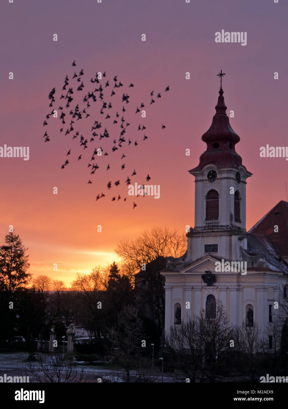Flock of Pigeons Flaying  around The Church in front of Sunrise. - Stock Image
