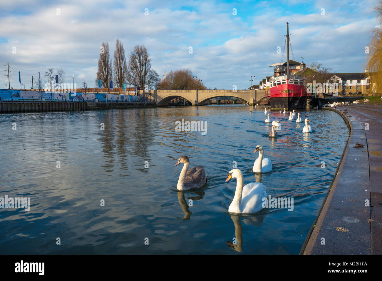 River Nene, Peterborough, Cambridgeshire. UK - Stock Image