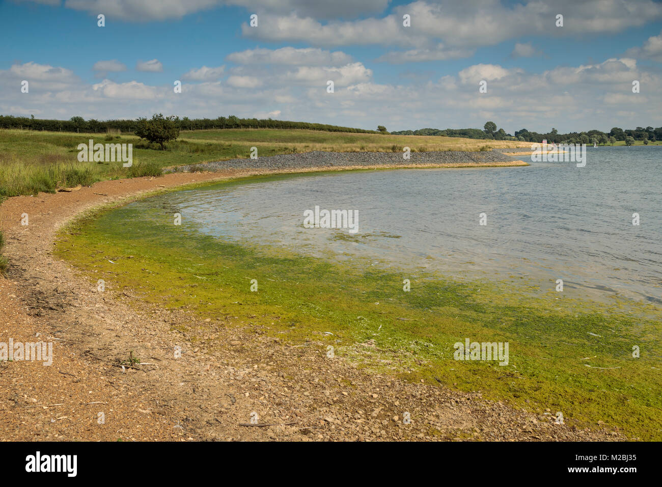 An image showing the lead up to a headland at Rutland Water, Rutland, England, UK, Stock Photo