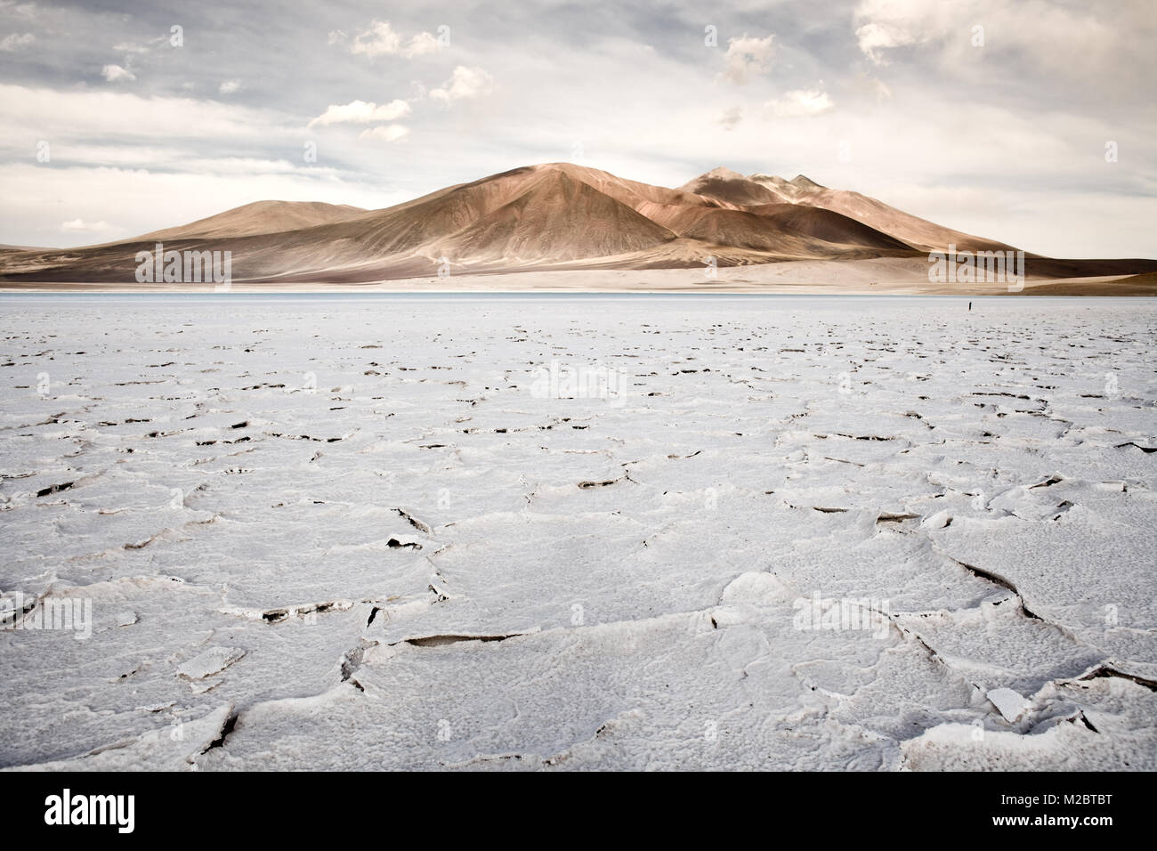 Salt crust in the shore of lagoon and salt lake Tuyajto, Altiplano (High Andean Plateau), Los Flamencos National - Stock Image