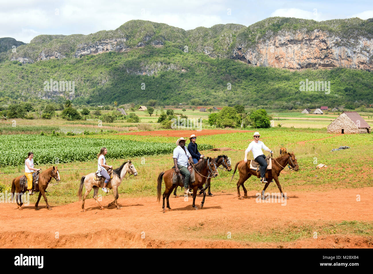 Tourists and their guide Horseback riding in Vinales Valley, Pinar Del Rio , Cuba - Stock Image