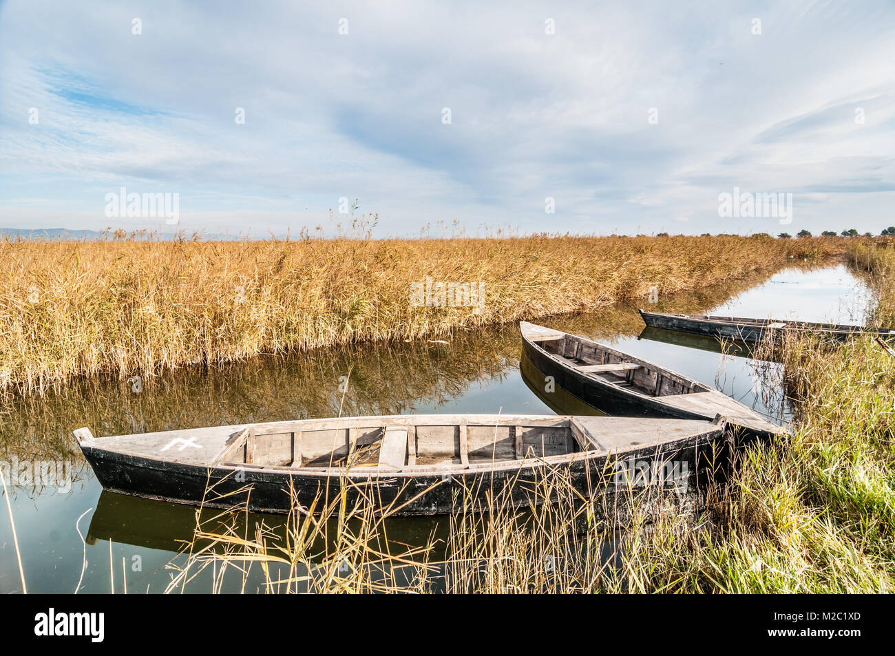 Canoes in a watering canal, Ebro Delta, Catalonia, Spain Stock Photo