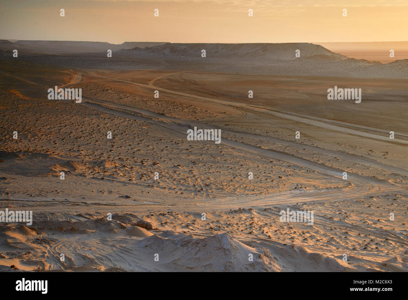 tracks in the desert sand, Western Sahara - Stock Image