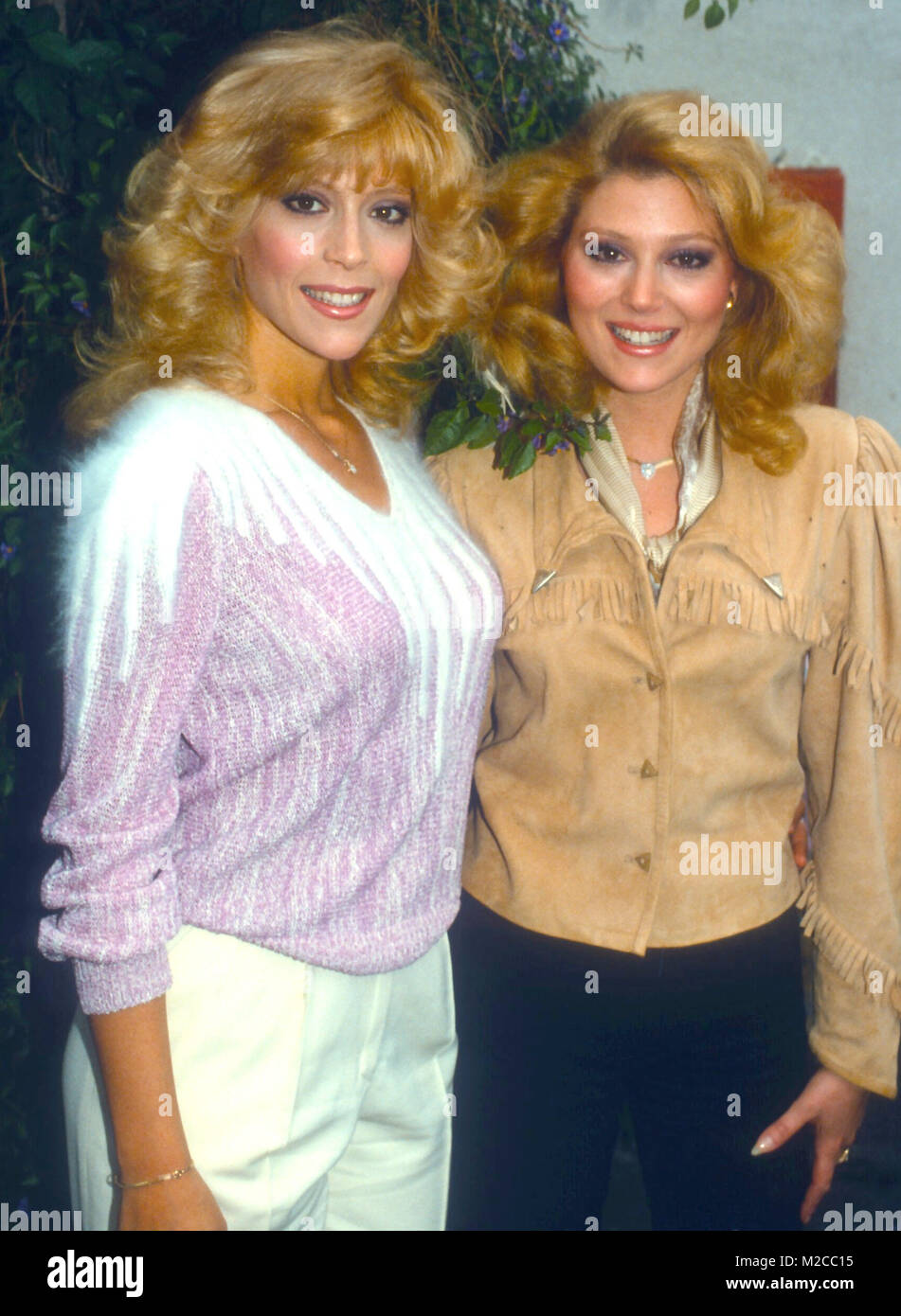 audrey landers now