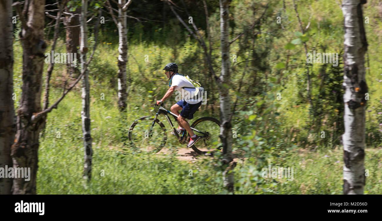 Kittredge, Colorado - A mountain biker on the Bear Creek Trail. Stock Photo