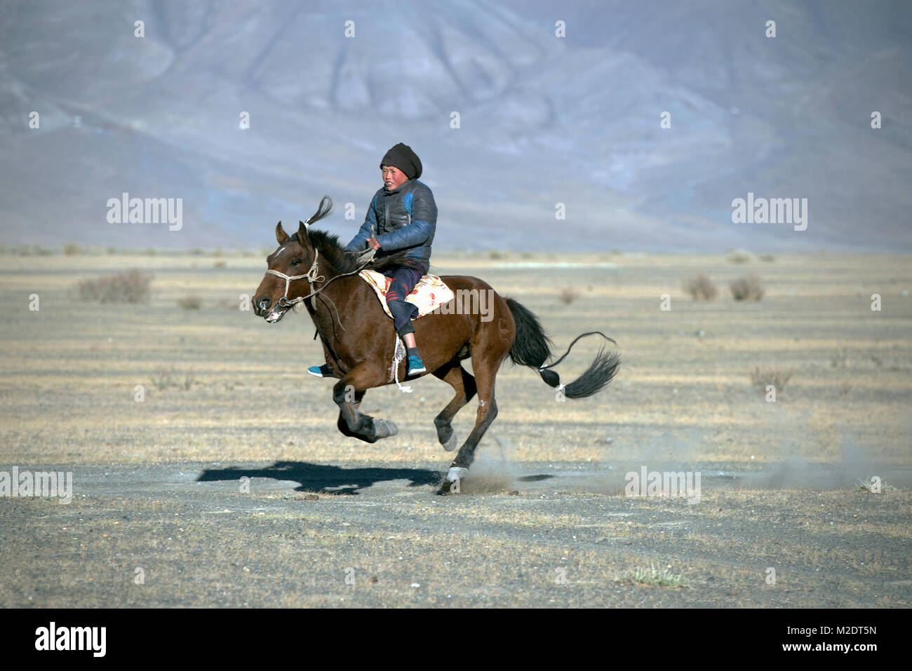 A young Kazakh boy demonstrates his horsemanship skill during a racing event. - Stock Image