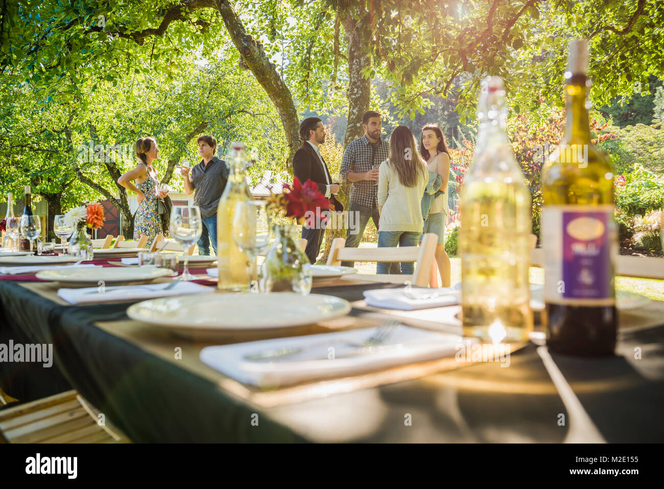 Wine bottles on table at party outdoors - Stock Image