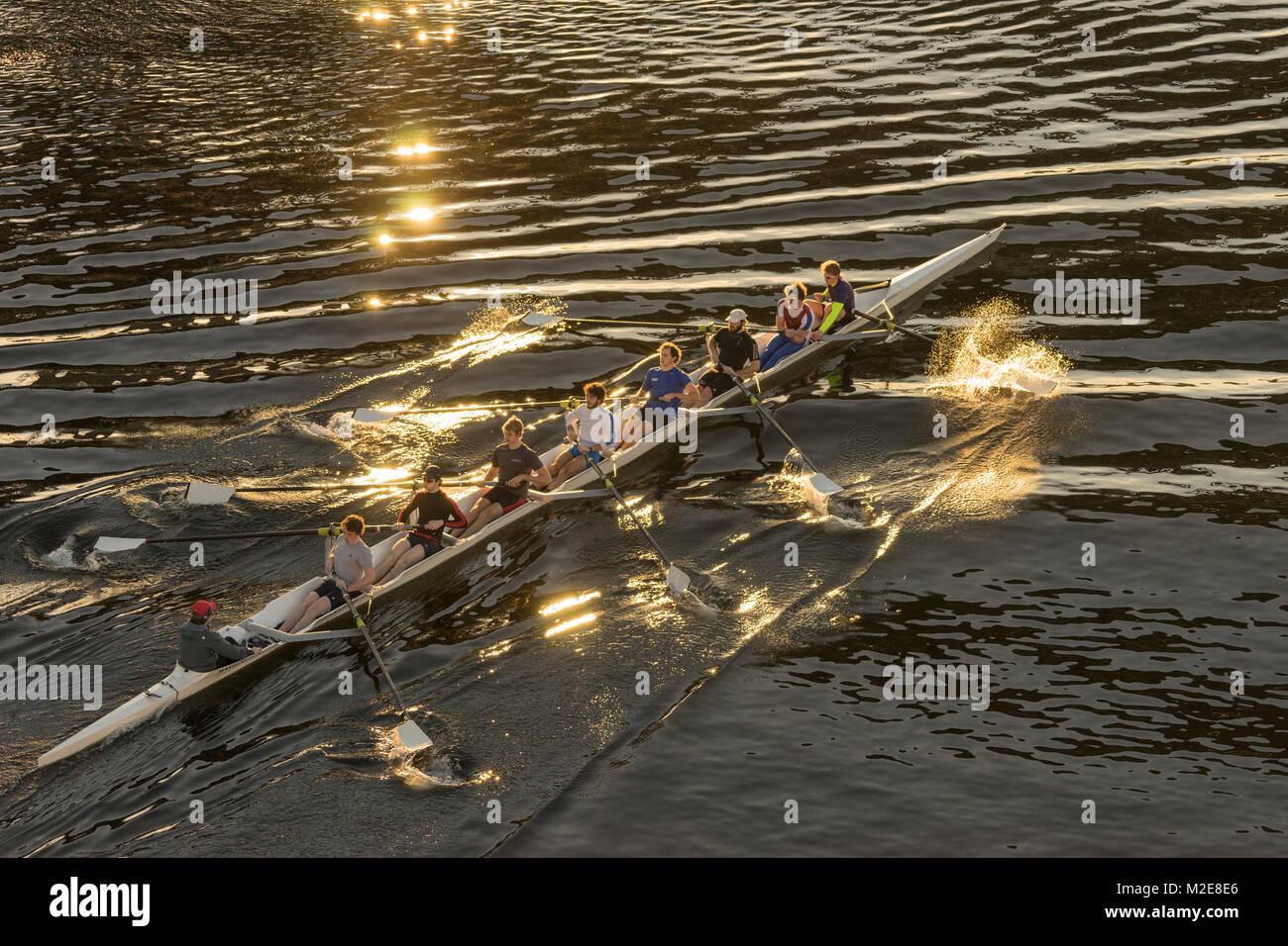 United States, Washington, Seattle, Racing shell on Lake Union - Stock Image