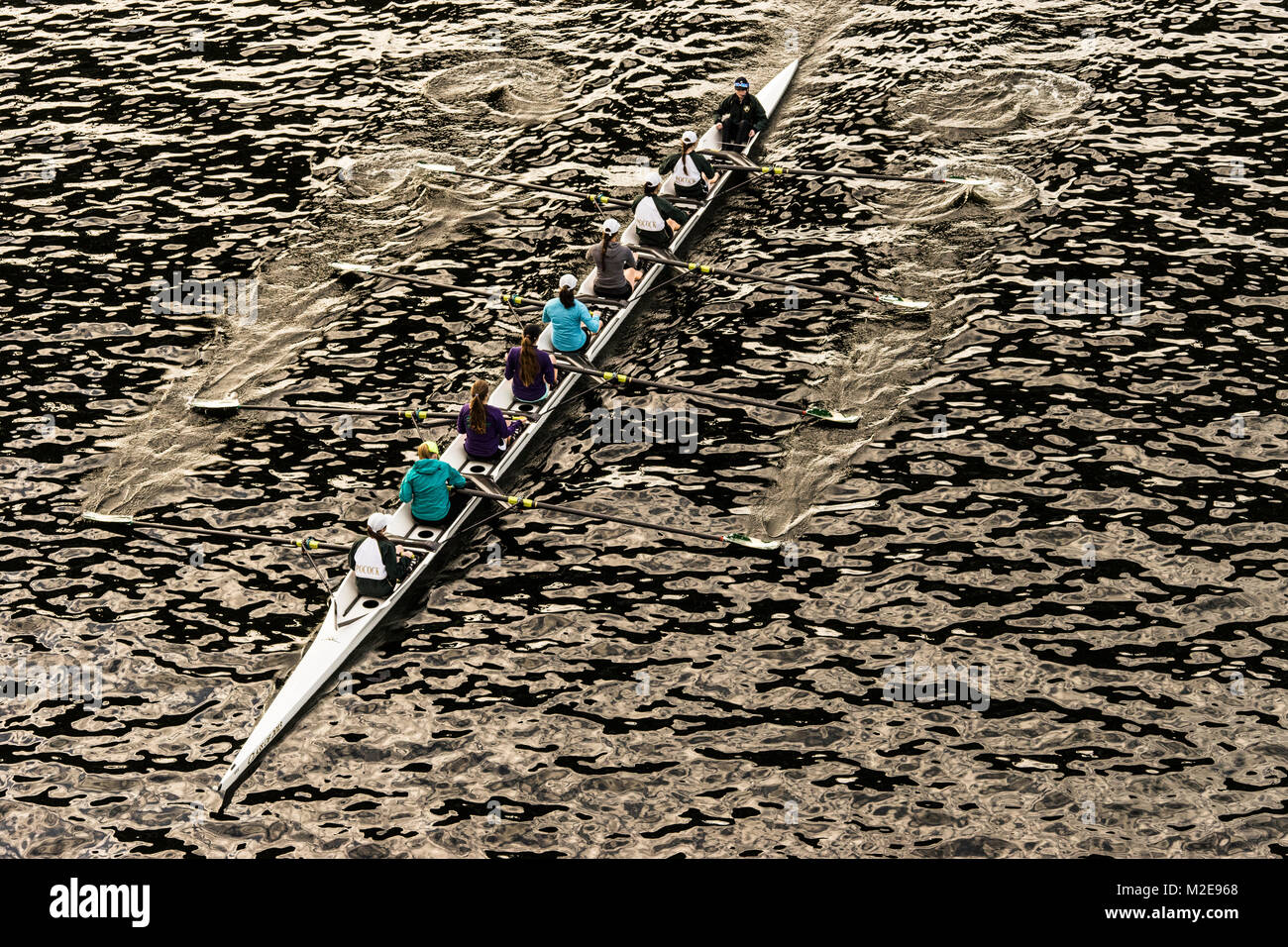 United States, Washington, Seattle, Rowing schells on Lake Union with woman at the oars - Stock Image