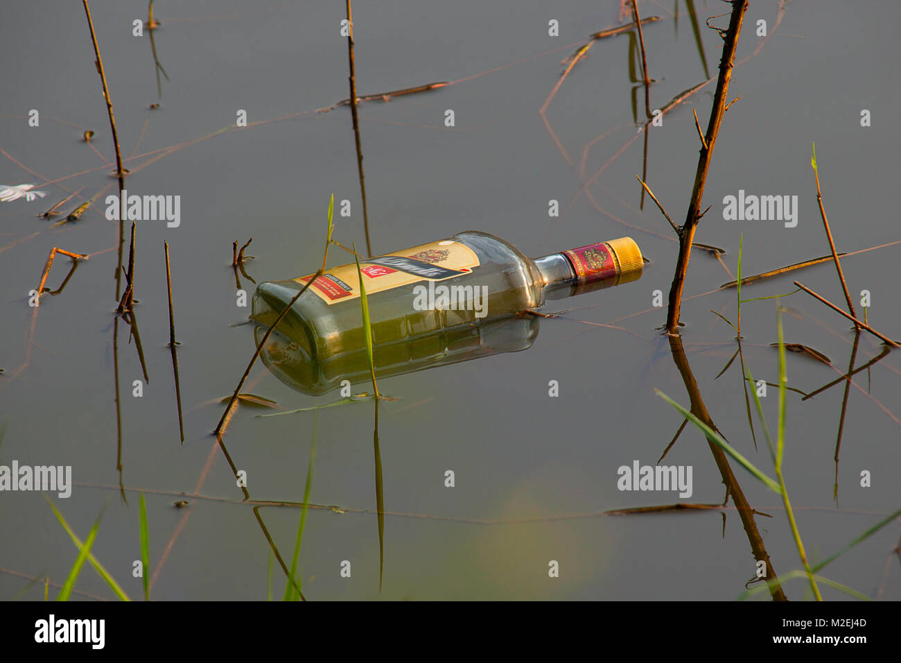 Common example of human tendency to neglect and pollute the nature and mother earth. An empty liquor bottle thrown - Stock Image
