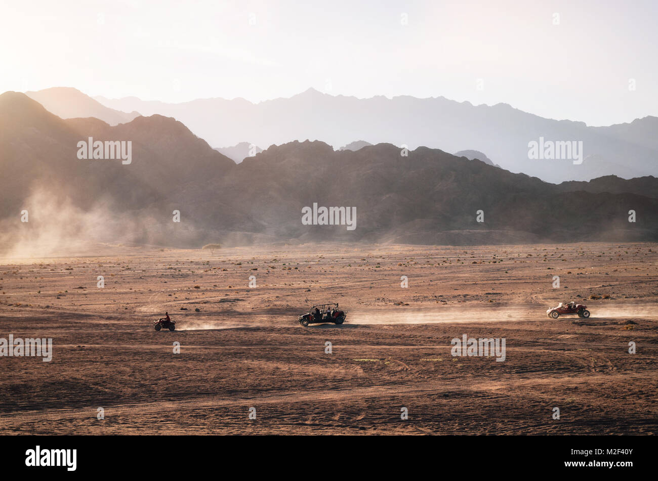 Buggy and ATV quads races in Sinai desert at sunset. Egyptian landscape with off-road vehicles and dust dirt road. - Stock Image
