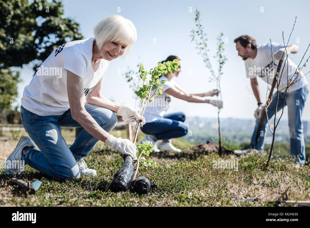 Cheerful aged woman looking at the tree Stock Photo