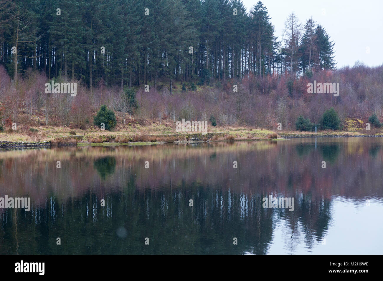 Ridgegate Reservoir in Macclesfield Forest on A Dank February Day - Stock Image
